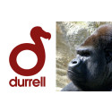Durrell Wildlife Conservation Trust partners with imagineear to provide multimedia guides for visitors