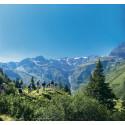 Vandring i Alperna om sommaren lockar allt fler svenskar