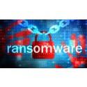 Så skyddar sig organisationer mot ransomware attacker