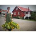 Sveriges gästvänligaste besöksmål finns på Tjörn i Västsverige