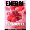 Reportage om programmet i Energivärlden nr 1, 2015 (sid 20-23)