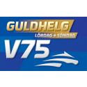 NY VERSION: Guldhelg med V75 - Jackpot med 47 miljoner på lördag