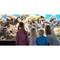Besöksrekord i oktober på Sjöfartsmuseet Akvariet
