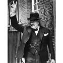 Sir Winston Churchills syn på psykiatriker
