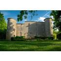 Slottet Château La Commanderie de Plaigne i Frankrike