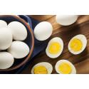 Ny sammanställning av forskningsläget för ägg som livsmedel