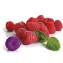 Vårens utbildningar för dig i livsmedelsindustrin