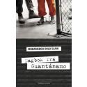 Vitnesbyrd fra Guantanamo vekker oppsikt