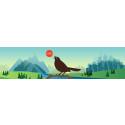 App i Shazam-stil har släppts i tid för fågelsång-säsongen