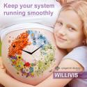 Dr Giorgini WILLIVIS: your intensive bowel support