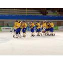 Sveriges ishockeylag klart för Universiaden i Granada 2015