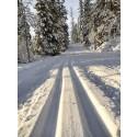 SM i Skidorientering i Vemdalen