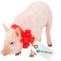 Julklapptips från Barnfonden: Julgrisen som gör skillnad