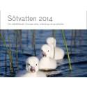Ny HaV-rapport: Vänerns stränder håller på att växa igen