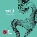 Dalhallas majestätiska kalkbrott och trollska skogar gästas av mystiske Vaal under festivalen Into the Valley