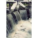 Riksdagen tar upp biologisk mångfald och vattenkraft