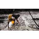Nigeria: Domstolshandlingar avslöjar Shells falska påståenden om oljeutsläpp