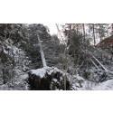 Status på feilretting etter orkanen Nina