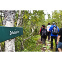 Pressemeddelelse: Gå i sabotørernes fodspor i Telemark