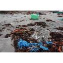 Skräprapporten 2015: Plast vanligaste skräpet i Östersjön