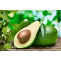 Kanadensiska forskare testar avokado mot blodcancer som drabbar äldre