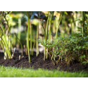 Katemullan käyttö helpottaa puutarhan kevättöitä