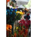 Barcelona bugner af roser, bøger og kærlighed den 23. april