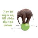 Folkligt nej till vilda djur på cirkus