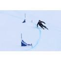 Världseliten i Skicross på plats i Hemavan