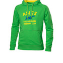 ASICS M'S GRAPHIC HOODIE_Power Green_SS14_110589_0498