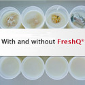 FreshQ®: Bioprotective cultures for fresh dairy products