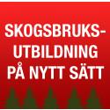 Utbildning i skogsbruk på nytt sätt hos Stora Enso Skog