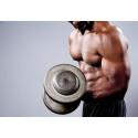 Anabola steroider ger farligare kroppsfett