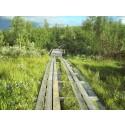 Pengar till samebyarna för att begränsa skador på våtmarker