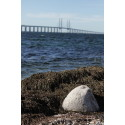 A lovely view of the Öresund Bridge at Mynewsday Malmö, Sweden