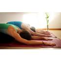 Prova yoga som passar alla på Stora Nolia