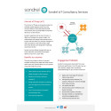 Internet of Things (IoT) Consultancy Services