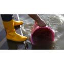 Källaröversvämningar är ett allt besvärligare problem i tätorter