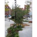 Husk grønne områder til de stressede storbymennesker