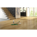 Cleaning and Maintenance of Laminate Flooring