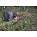 Miljöhänsyn i skogsbruk fungerar