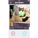 Tinder For Cats – The latest way to waste your time.