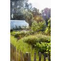 Lekträdgården på Rosendals Trädgård