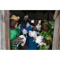Adecco firar påsk med ActionAid!
