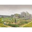 Architecture students reveal urban farm