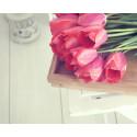 Kevätsiivousaika alkaa - CupoNation osallistuu kodin kevääseen sisustuskampanjalla