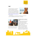 Nyhetsbrev från Horses made in Sweden