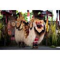 Barongdans - indonesisk kultur