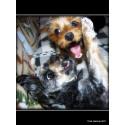 Hundparty med Pawfix - testa nya spännande produkter