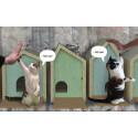 Okidoki på pallplats i internationell tävling - räddar katterna (och planeten)